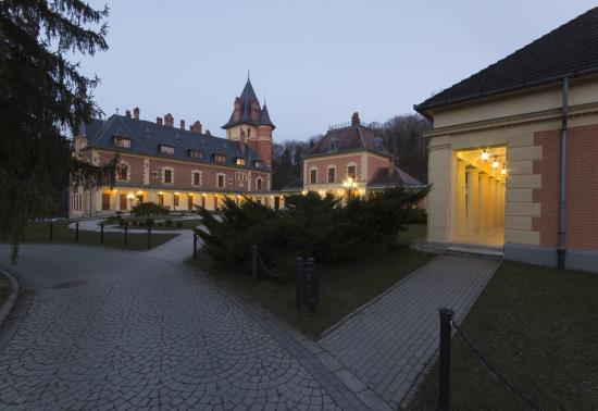 Kastély Hotel este (5)